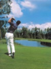 Forest Glen Golf Naples